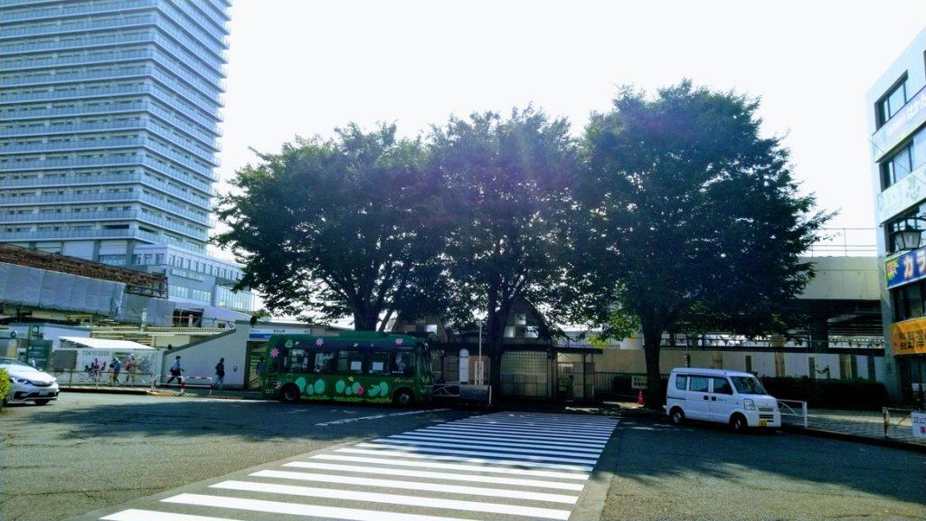 志村けんの木2